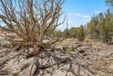 1563 Canvasback Trail - Photo 17