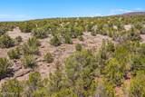 1563 Canvasback Trail - Photo 25