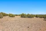 1563 Canvasback Trail - Photo 5