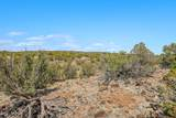 1563 Canvasback Trail - Photo 7