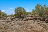 1563 Canvasback Trail - Photo 8