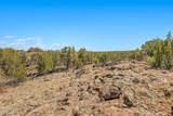 1563 Canvasback Trail - Photo 9