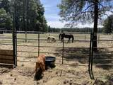388 Benham Ranch Road - Photo 27