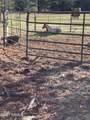 388 Benham Ranch Road - Photo 31
