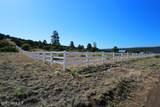8037 Sleeping Dog Road - Photo 6