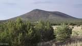 8186 Cassity Trail - Photo 1