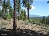 3715 Bridle Path - Photo 1