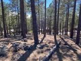 3715 Bridle Path - Photo 5