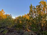 9614 Stagecoach Drive - Photo 15