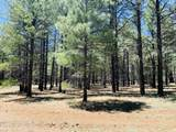 17440 Forest Service 146 W Road - Photo 1