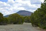 1311 Utopia Trail - Photo 2