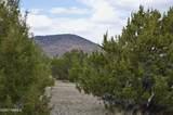 1311 Utopia Trail - Photo 3