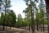 9565 Forest Service 713 Road - Photo 13