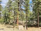 1628 Canyon View Loop - Photo 20