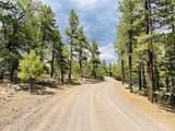 1628 Canyon View Loop - Photo 21