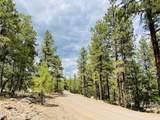 1628 Canyon View Loop - Photo 23