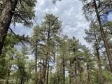 1628 Canyon View Loop - Photo 24