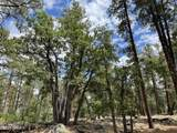 1628 Canyon View Loop - Photo 25