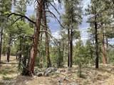 1628 Canyon View Loop - Photo 26