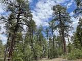 1628 Canyon View Loop - Photo 27