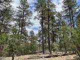 1628 Canyon View Loop - Photo 28