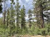 1628 Canyon View Loop - Photo 29