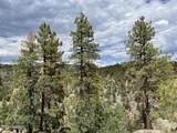 1628 Canyon View Loop - Photo 30