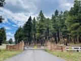 1628 Canyon View Loop - Photo 32