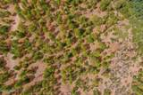 1628 Canyon View Loop - Photo 6