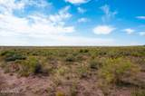 40 Acres Tract 427 Painted Desert Ranch - Photo 14