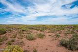 40 Acres Tract 427 Painted Desert Ranch - Photo 18