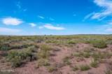 40 Acres Tract 427 Painted Desert Ranch - Photo 20