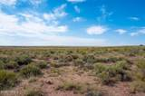 40 Acres Tract 427 Painted Desert Ranch - Photo 23