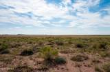 40 Acres Tract 427 Painted Desert Ranch - Photo 24