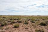 40 Acres Tract 427 Painted Desert Ranch - Photo 26