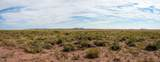 40 Acres Tract 427 Painted Desert Ranch - Photo 27