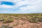 40 Acres Tract 427 Painted Desert Ranch - Photo 31