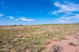 40 Acres Tract 427 Painted Desert Ranch - Photo 32