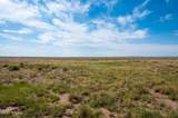 40 Acres Tract 427 Painted Desert Ranch - Photo 35