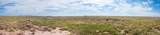 40 Acres Tract 427 Painted Desert Ranch - Photo 40