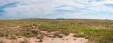 40 Acres Tract 427 Painted Desert Ranch - Photo 41