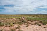 40 Acres Tract 427 Painted Desert Ranch - Photo 42