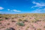 40 Acres Tract 427 Painted Desert Ranch - Photo 43