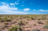 40 Acres Tract 427 Painted Desert Ranch - Photo 45