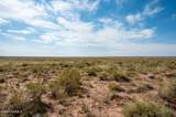 40 Acres Tract 427 Painted Desert Ranch - Photo 46