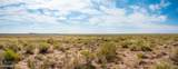 40 Acres Tract 427 Painted Desert Ranch - Photo 47