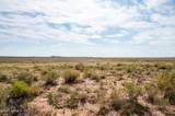 40 Acres Tract 427 Painted Desert Ranch - Photo 48
