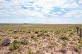 40 Acres Tract 427 Painted Desert Ranch - Photo 49