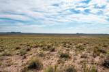 40 Acres Tract 427 Painted Desert Ranch - Photo 57