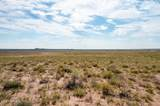 40 Acres Tract 427 Painted Desert Ranch - Photo 59